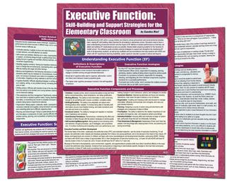 Executive Function: Elementary Classroom